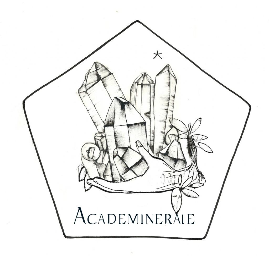 logo Académinérale ok