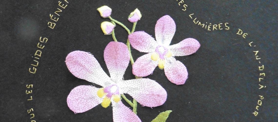 DIAP2-05-Fleurs OK