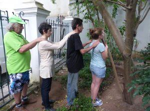 Lancement du Manifeste de l'arbre à Salvador de Bahia en 2014 avec Pierre Capelle
