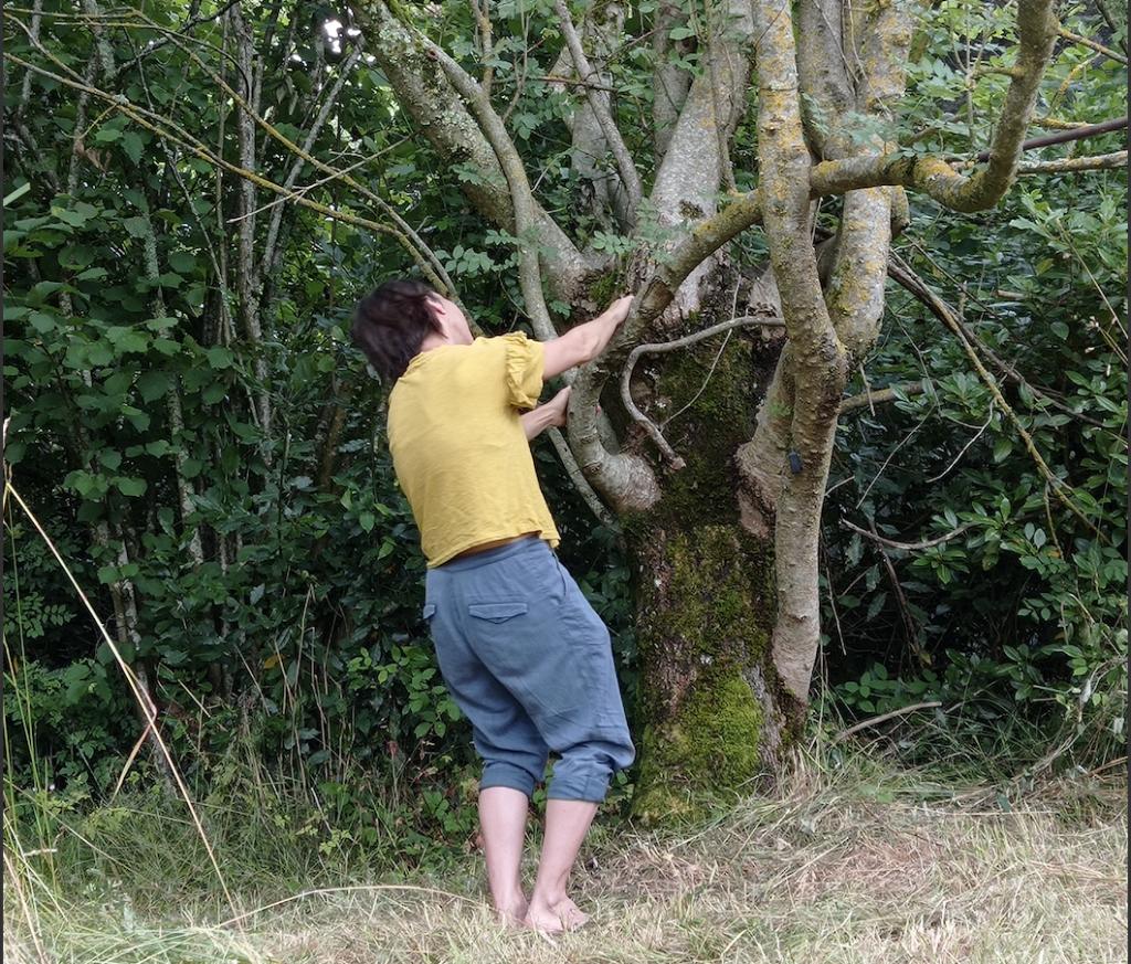 Contact à l'arbre pendant le festival Les nuits des forêts